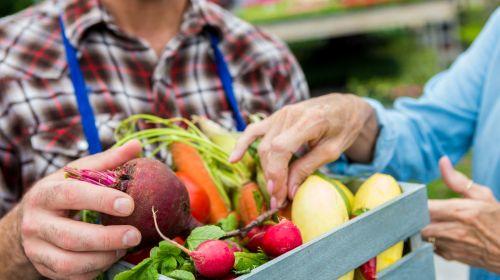 14 Lebensmittel, um Demenz vorzubeugen