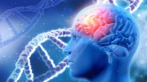Test: Demenz oder nur vergesslich?